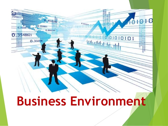 Elements Of The Business Environment